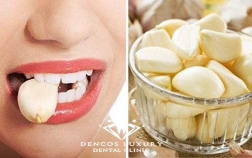 Cách chữa viêm tủy răng tại nhà nhanh nhất bằng tỏi 1